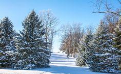 Wisconsin Winter