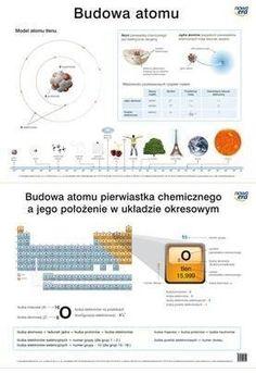 Study, Science, School, Studio, Studying, Research