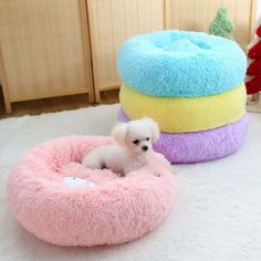 Macaron Round Soft Cotton Pet Cat Bed Dog Bed Sofa For Small Dogs Sleeping House blanket Winter Warm Nest Puppy Cave 5 Colors Cute Dog Beds, Pet Beds, Cute Dogs, Chihuahua Bed, Round Dog Bed, Fluffy Bedding, Dog Sofa Bed, Sleeping Dogs, Fluffy Cat
