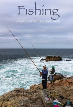 Fishing in Hermanus offers a variety of fishing spots on the Whale Coast Route near Cape Town in South Africa Holiday Accommodation, Adventure Activities, Cape Town, South Africa, Whale, Coast, Fishing, Travel, Viajes