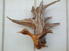 Hummingbird Wall Sculpture of Found Mountain Cedar Stumps mounted to Reclaimed Driftwood