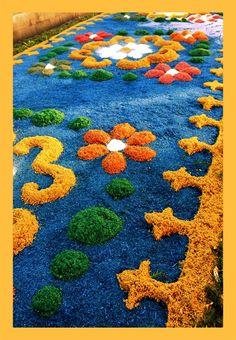 "Corpus Christi's - ""Sawdust Rugs"" - Flores da Cunha, in southern Brazil - truly amaZing!"