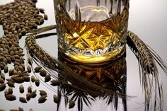 From land to bottle                                                                          THE FUTURE of Scotch whisky is being boosted by...