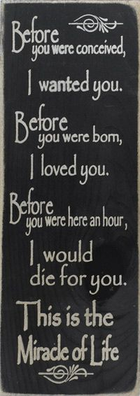 Before you were conceived I wanted you. Before you were born, I loved you. Before you were here an hour, I would die for you. This is the miracle of life. Inspirational, Spiritual, Motivational & Positive Quotes & Sayings Great Quotes, Quotes To Live By, Me Quotes, Inspirational Quotes, Mommy Quotes, Son Sayings, Baby Quotes, Mother Quotes, Love You