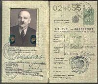 Dr. Rotschild Andor (Arnold) főorvos útlevele | axioart.com