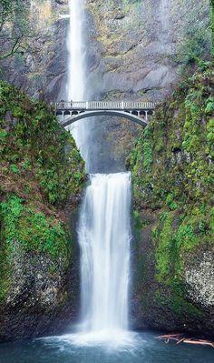 The mystical Multnomah Falls in Portland, Oregon Waterfall Photo, Waterfall Hikes, Scenic Photography, Nature Photography, Waterfalls Photography, Night Photography, Landscape Photography, Oregon Waterfalls, Backyard Waterfalls