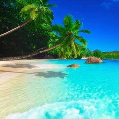 Iakov Kalinin, beach at Praslin island, Seychelles Strand, Meer Vacation Destinations, Dream Vacations, Vacation Spots, Romantic Vacations, Vacation Travel, Italy Vacation, Romantic Travel, Places To Travel, Places To See