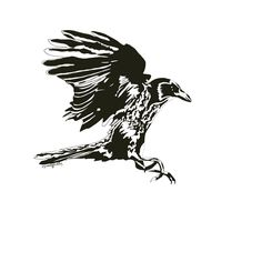 Landing Crow. We all need a place to land when we have been flying about. #art #artstagram #crow #animals #newart #folow4folow #penart #sammyjackles #home #artcommissions #commission