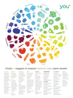 You+ Wellness program by Laura Biel, via Behance