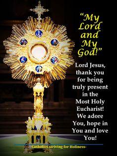 Catholic Sacraments, Catholic Beliefs, Catholic Quotes, Bible Prayers, Catholic Prayers, Adoration Catholic, God Prayer, Prayer Cards, Holy Hour
