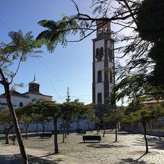 Santa Cruz de Tenerife en Santa Cruz de Tenerife, Canarias harinalia