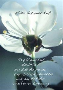 Trauerkerze Blüte Alles hat seine Zeit