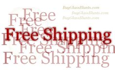 FREE SHIPPING CODE for Happy Hollow Glass - All Sites - Happyhollowglass.com/shop - Zero Waste!!