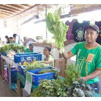 #Ubud Organic Market, fresh and healthy produce