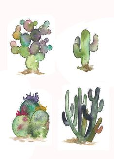 The specifics: This Listing is for a set of 4 cactus. Each print is The art has been printed on professional, heavy card stock with a satin Watercolor Cactus, Watercolor Paintings, Watercolors, Painting Inspiration, Art Inspo, Kaktus Tattoo, Toile Photo, Posters Vintage, Desert Art