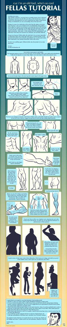 Estudo corpo masculino