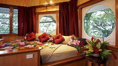 Treetop suite....