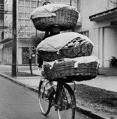 Transportando pan.