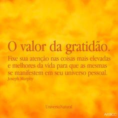 O valor da gratidão