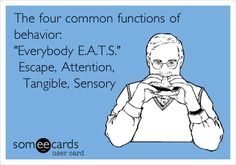 Autism Education, Special Education Classroom, Behavior Analyst, Behavior Interventions, Behavior Management, Psychology Humor, School Psychology, Behavior Plans, Texts