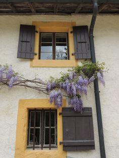 House from Ballenberg, Switzerland