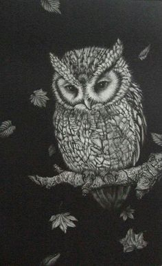 Owl.  Love this. From Japanese blog site.  Can't decipher artist.