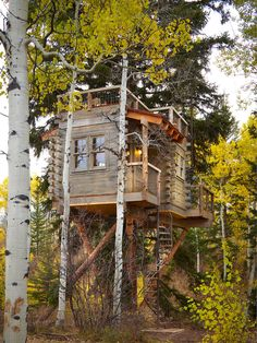 Rustic Tree House Exterior Design