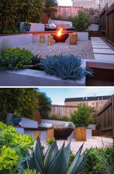 This modern landscaped backyard has a raised outdoor lounge deck, a wood burning firepit, succulents, bamboo and a vegetable garden. #ModernLandscape #ModernLandscaping