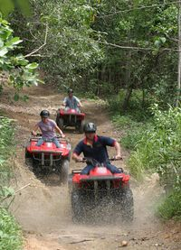 Blazing Saddles - Full Day ATV bikes and horse riding $195 each 10.45am - 4pm