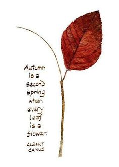 "I was so happy when I found this beautiful quote by Albert Camus: ""Autumn is a second spring when every leaf is a flower"". Maybe that's why I love autumn so much. I painted a leaf from my backyard. Albert Camus, Camus Quotes, Autumn Inspiration, Happy Fall, Leaf Prints, True Words, Fall Halloween, Beautiful Words, Autumn Leaves"