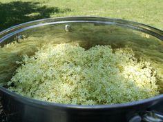 i np z miętą, za to w okresie Grains, Rice, Herbs, Jar, Baking, Smoothie, Bakken, Herb, Smoothies