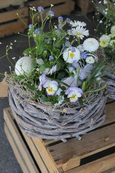 Spring basket white blue - Anne Montesano - # Spring basket # white Best Picture For decor baskets for baby For Your Taste You are looking for something, and it is going to tell Easter Garden, Spring Garden, Easter Flowers, Spring Flowers, Deco Floral, Basket Decoration, Easter Table, Easter Wreaths, Easter Crafts