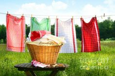 """Sandra Cunningham. """"Towels Drying On the Clothesline"""""""