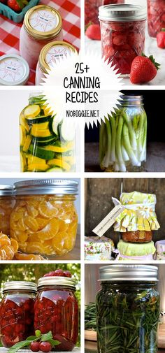 25 Canning Recipes Read More by kristynm Canning Pickles, Canning Tips, Salsa Canning Recipes, Canning Labels, Jelly Recipes, Canning Food Preservation, Preserving Food, Canning Vegetables, Pickles