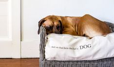 Farmhouse Style Dog Bed Tutorial - She Holds Dearly Farmhouse Dog Beds, Farmhouse Style, Custom Dog Beds, Puppy Cake, Funky Junk, Old Dogs, Diy Stuffed Animals, New Tricks, Party Hats