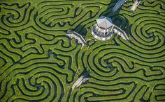 Longleat; hedge maze