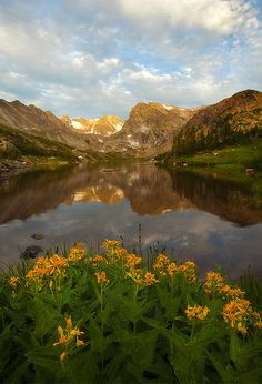 Summer Lake Isabelle - Indian Peak Wilderness, Colorado