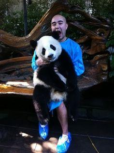 Panda lunch. China 2011