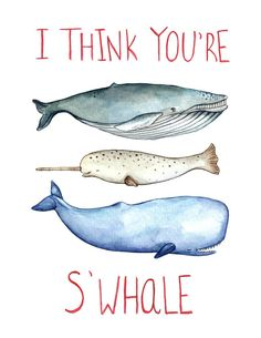 Any whale lover will nerd out on this adorable print! Featuring a happy cluster of sea creatures, including a blue whale, narwhal and a sperm