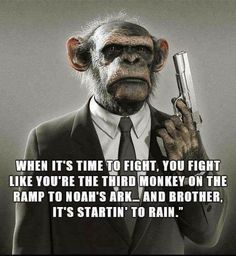 Funny lololol, but a lot of self defence value to this! www.safeinternational.biz www.safe101.education #selfdefense #selfdefenseforwomen #violenceprevention Stupid Funny Memes, Haha Funny, Funny Shit, Hilarious, Funny Humor, Funny Stuff, Wisdom Quotes, Life Quotes, Mood Quotes
