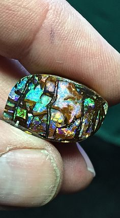 A nice piece of Opalized Wood from Yowah.