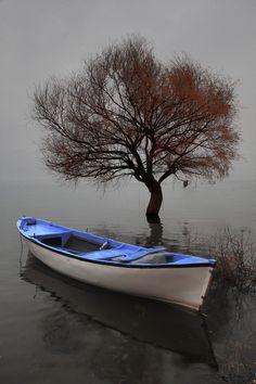 """500px / Photo """"""""serenity"""" (fog)"""" by engin erol"""