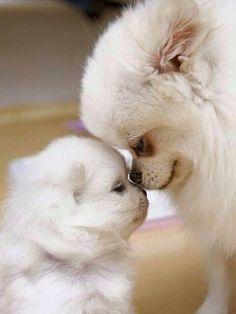 Love!.