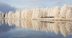 This morning in Rovaniemi Lapland Finland Photo by YleMaija-Liisa Juntti Beautiful World, Beautiful Places, Beautiful Scenery, Santa Claus Village, Lapland Finland, Lappland, Arctic Circle, Images Google, Pictures To Paint