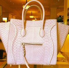 Big Dreams & Luxury Taste
