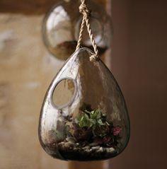 La tendance est aux minis terrariums suspendus. Puisque la structure vitrée (verre recyclé) permet à la conservation d'humidité, vous pouvez...