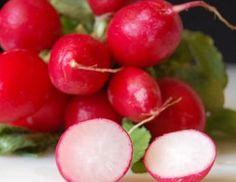 # Rábanos Composición por 100 gramos de porción comestible    Energía (Kcal)15  Proteínas (g) 0,6  Glúcidos totales (g)    2,6  Azúcares (g) 2,6  Lípidos totales (g)    0,3  Saturadas (g)   0  Fibra (g)    1,2  Sodio (mg)    12  Colesterol total (mg)    0  Vitaminas: vitamina A, B9, C, carotenoides Información obtenida de: Tablas de composición de alimentos del CESNID