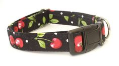 Cherries and Polka Dots 2' Width Dog Collar - Buckle and Martingale -Caninus Collars => More infor at the link of image  : Cat Collar, Harness and Leash