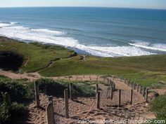 Fort Funston: one of the top hang gliding spots in us, dog park. is this where the secret tunnel is??  i will find it one day!!