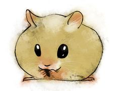 Hamster illustration by droidonthemoon